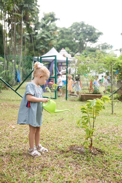 Heartfield Outdoor Exploration and Nature Caring for our guava sapling