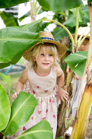 Heartfield Outdoor Exploration and Nature Exploring our banana grove